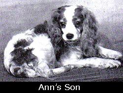 AnnsSon[1]