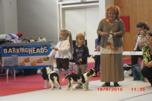 Rebeka a Ninnive Sevi Biely démon prvý krát na výstave v súťaži Dieťa a pes