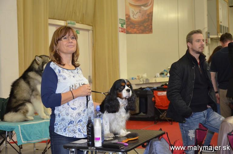 Hrdá majiteľka Katarína Kozinová s Artušom Z Malého Majera čaká na vystavovanie v súťaži Best in Group v 9. skupine FCI spoločenských plemine